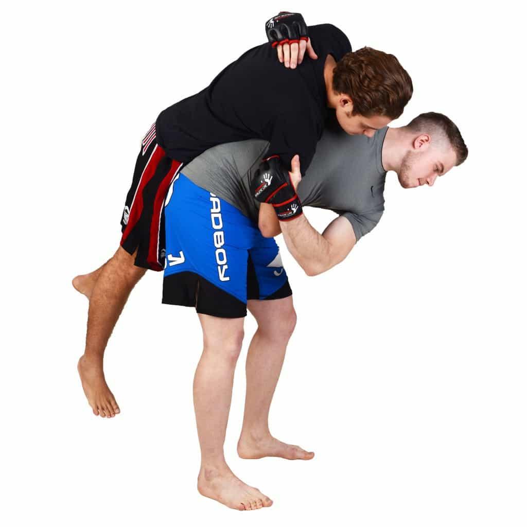 Mixed Martial Arts / gemischte Kampfkünste