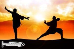 Kampfkunst Seminare